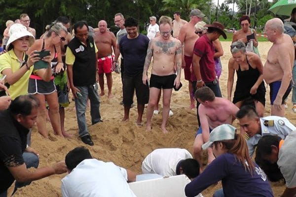 89 leatherback turtle eggs moved to safe area on beach | News by Thaiger