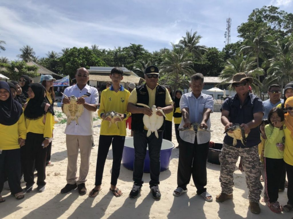Boon Rawd - the reluctant sea turtle | News by Thaiger