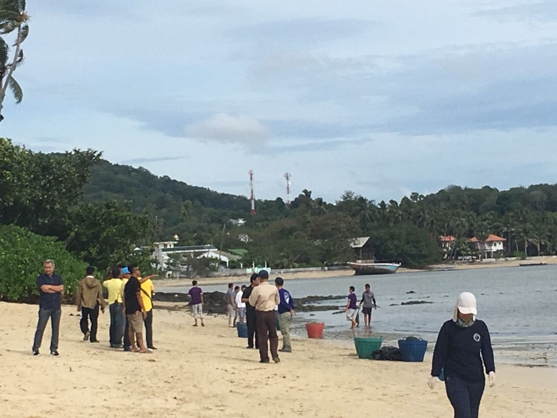 Phuket beach back to normal after oil-spill clean-up | The Thaiger