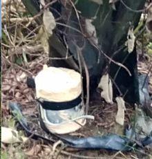 คุมเข้มสงขลา! หลังคนร้ายวางระเบิดโค่นเสาไฟฟ้า 2 ต้น พบซุกเพิ่มอีก 4 | News by The Thaiger