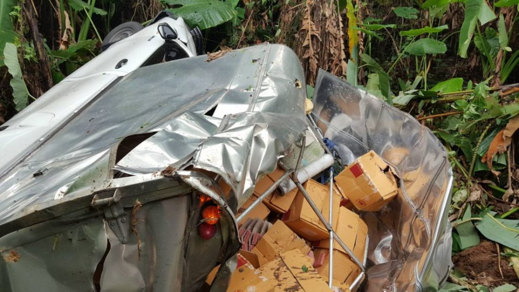 Overloaded pickup truck rolls off road into Rawai jungle | News by The Thaiger