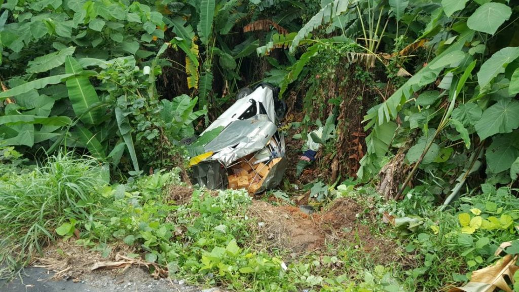 Overloaded pickup truck rolls off road into Rawai jungle | News by Thaiger