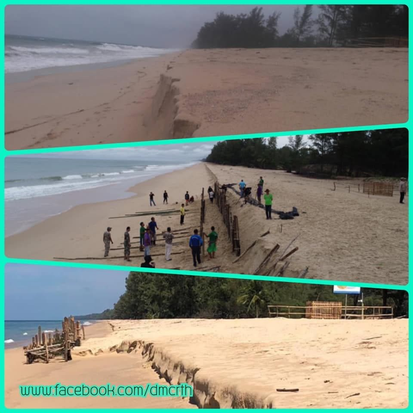 Leather back turtle egg nest on Phang Nga beach safe after Pabuk   News by Thaiger