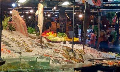 Sharks on order – Phuket seafood restaurants | The Thaiger
