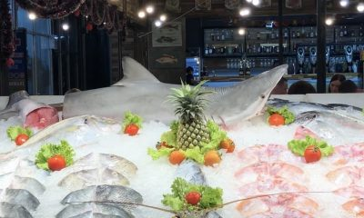 More sharks found displayed at seafood restaurant in Phuket | The Thaiger