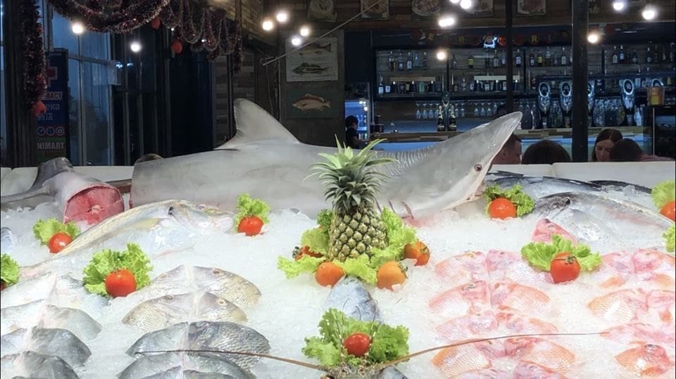 Sharks on order - Phuket seafood restaurants | News by The Thaiger