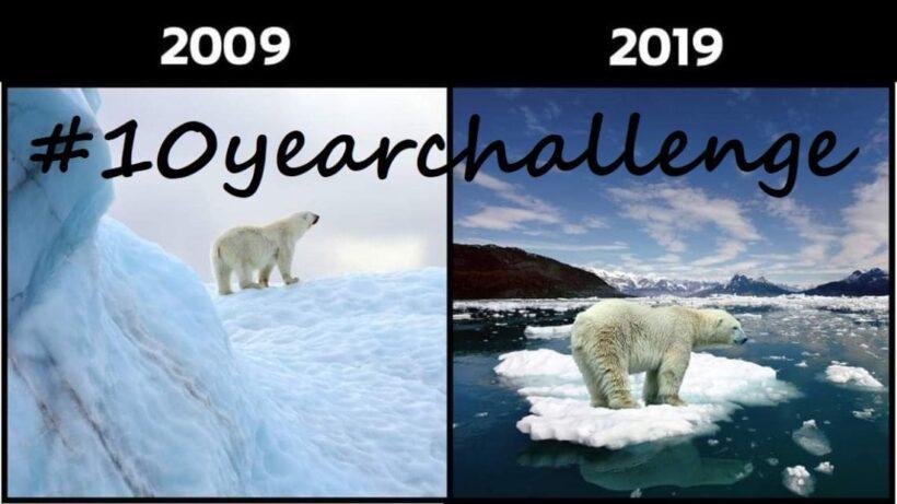 #10yearchallenge คนเติบโต ธรรมชาติถดถอย | The Thaiger
