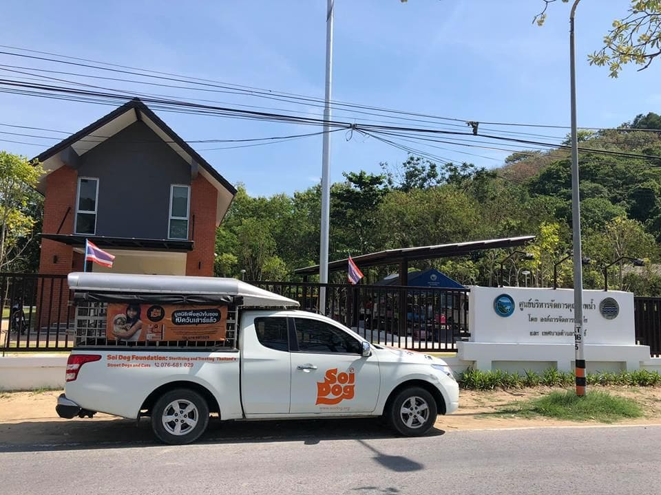 Soi Dog's mobile clinic continues in Phuket, starting in Rawai | News by The Thaiger
