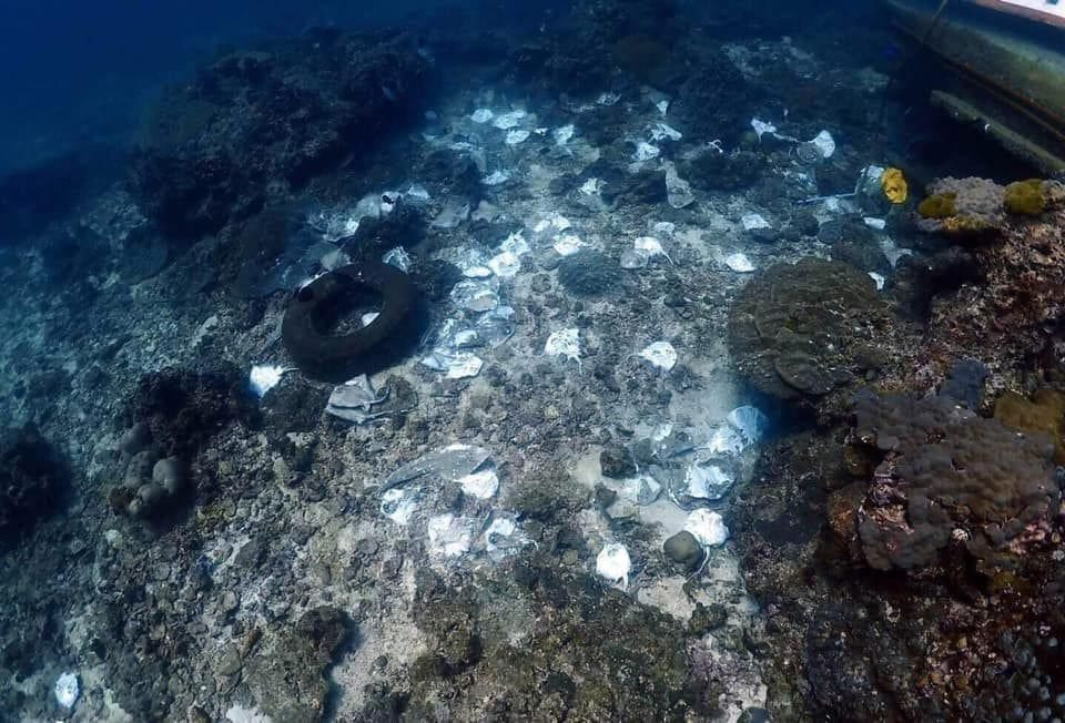 Coral damage from a sunken fishing boat at Koh Racha Noi - Phuket | News by Thaiger