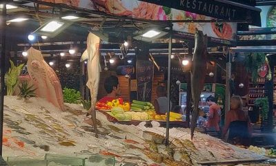 Blacktip reef sharks found at Phuket seafood restaurant | The Thaiger