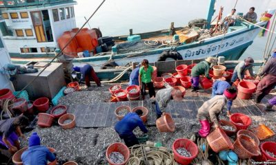 Greenpeace positive on lifting of Thailand's Yellow Card fishing sanction | The Thaiger