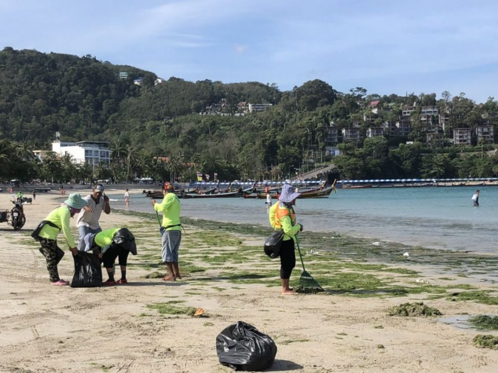 Lots of green seaweed washed up on Patong Beach | News by The Thaiger