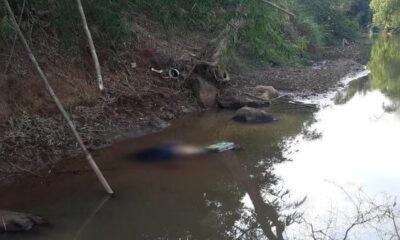 ฆ่าฟันคอแม่ค้าลอตเตอรี่สาวลาว ทิ้งศพแม่น้ำเหืองชายแดนไทย-ลาว   The Thaiger
