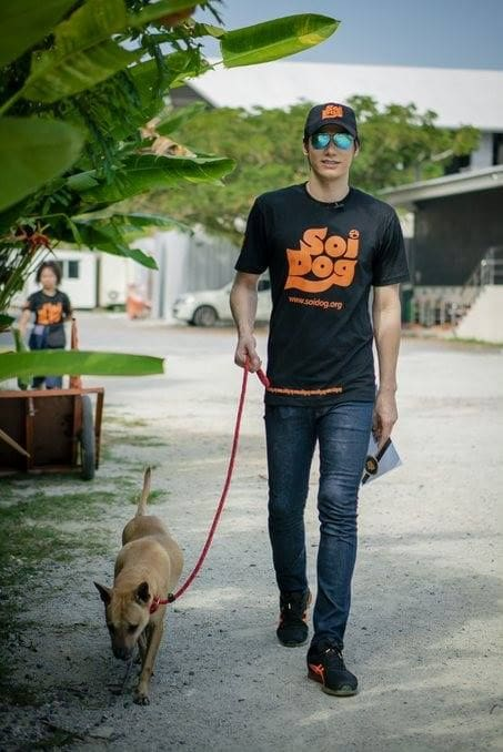 Peter Denman from Channel 3 visits Phuket's Soi Dog Foundation | News by The Thaiger