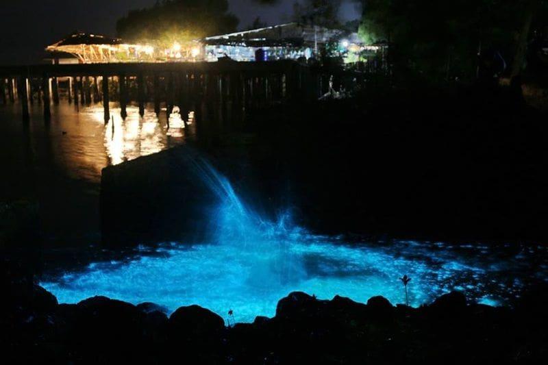 ท่องเที่ยวไทย : แพลงก์ตอนเรืองแสง สีฟ้าอร่ามเต็มท้องน้ำ