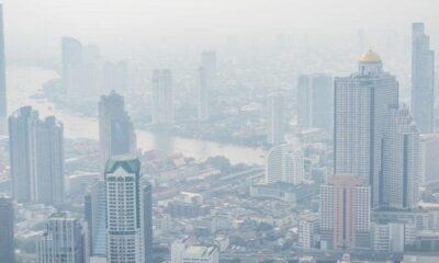 จับเว็บกุข่าว คนตายเพราะฝุ่นละออง PM2.5 – ผิด พรบ.คอมพิวเตอร์ | The Thaiger