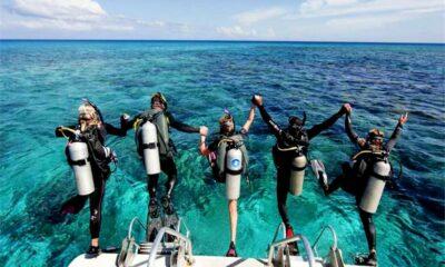 Updated marine rules – Koh Tao, Ko Phangan, Koh Samui | Thaiger