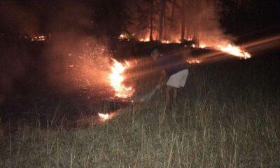 สุดระทึก! ไฟไหม้าป่าเสม็ดเกาะลันตา จนท.ช่วยดับก่อนลามย่านชุมชน | The Thaiger