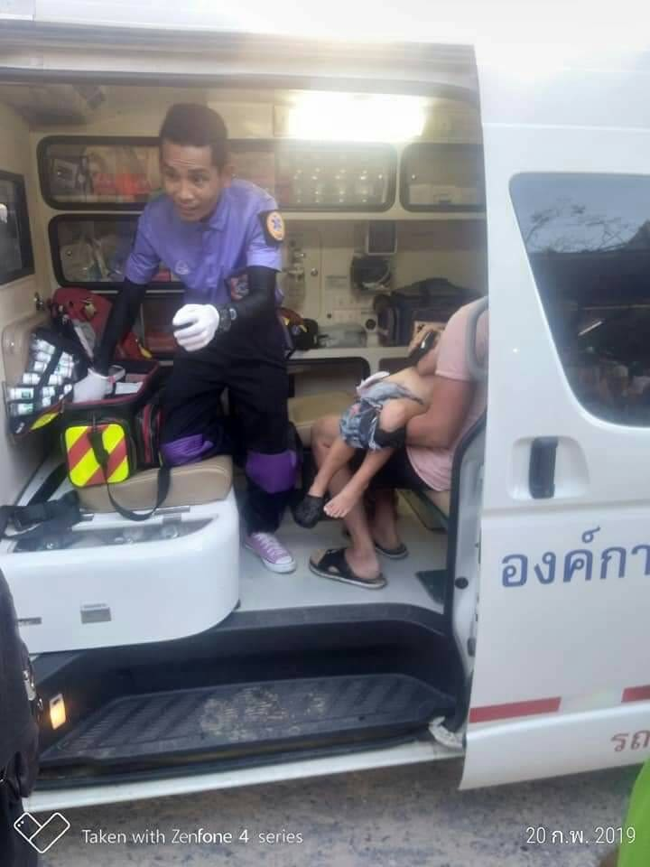 Five year old Finnish boy mauled by dogs at Krabi Beach | News by Thaiger