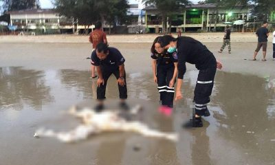 Two headless bodies found on Rayong beaches near Pattaya | The Thaiger