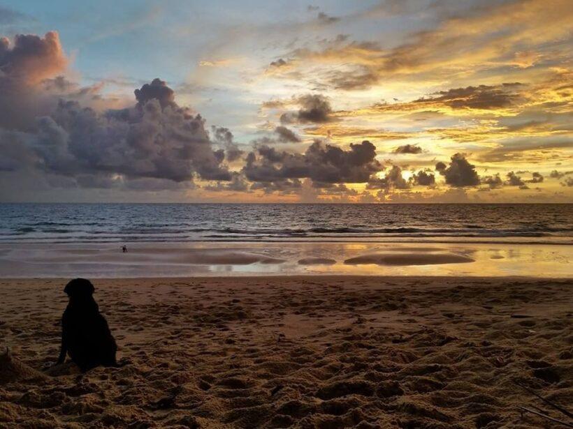 """นั่งชิล ชมอาทิตย์ลับผืนน้ำที่ """"หาดสุรินทร์"""" จ.ภูเก็ต   The Thaiger"""