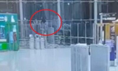 เพิ่งลงเครื่องถึงไทย ชายรัสเซียกระโดดชั้น 4 อาคารผู้โดยสาร สนามบินสุวรรณภูมิ [คลิป] | The Thaiger