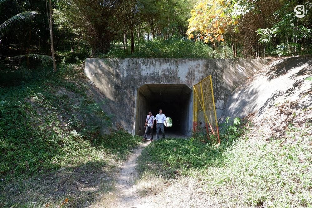 Tourist finds old tunnel on Koh Samui | News by The Thaiger