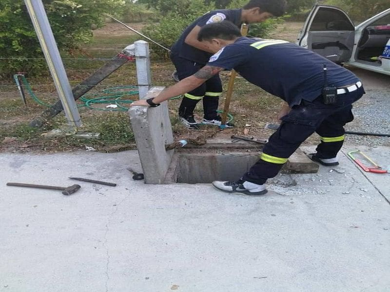 Python rescued from water drain cover in Wichit | The Thaiger