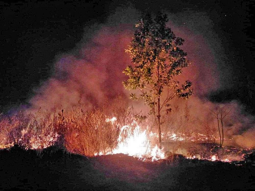 Fears that plantation fire could add to Bangkok pollution woes | News by Thaiger