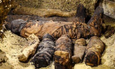 ตะลึง อียิปต์พบมัมมี่อายุ 2,000 ปี ในสภาพดี!   The Thaiger