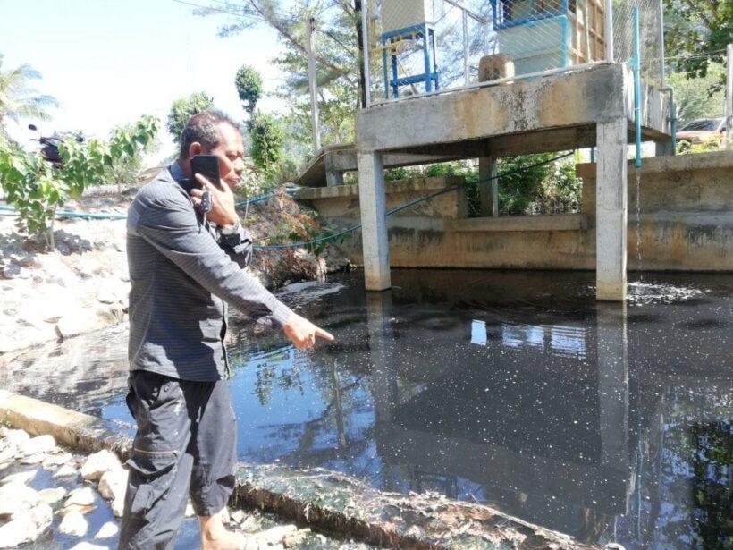 ชาวบ้านเกาะลันตา ร้องน้ำเสียทั้งลำคลอง ไหลลงทะเล ส่งกลิ่นเหม็น-แหล่งเพาะเชื้อโรค | News by The Thaiger