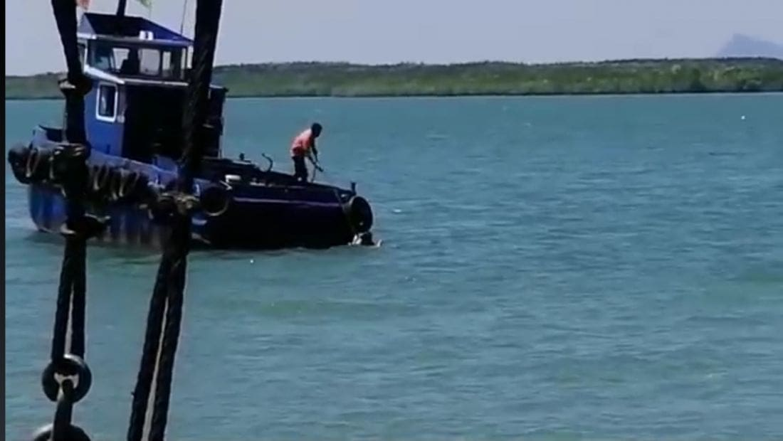 Foreign woman jumps into the water chasing ferry in Koh Lanta - VIDEO | News by The Thaiger