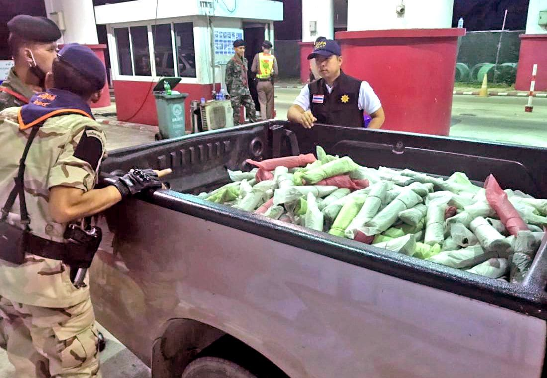 Two arrested with 100 kilograms of kratom in Phuket | The Thaiger