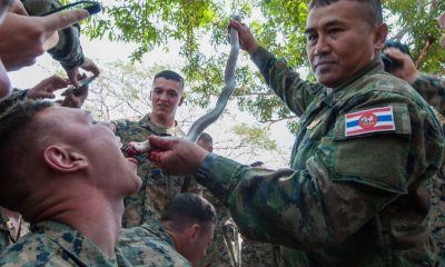 Cobra Gold troops drink blood from decapitated cobras in annual jungle ceremony | The Thaiger