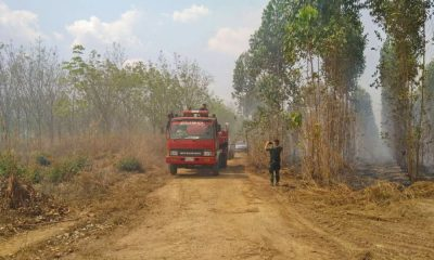 Chacheongsao rubber plantation fire under control after 15 hours | The Thaiger