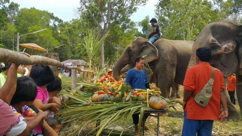 โรงพยาบาลช้างภาคใต้ จ.กระบี่ จัดทำบุญอุทิศส่วนกุศลให้ช้างที่เสียชีวิต เพื่อความสิริมงคลเนื่องในวัน ช้างไทย พร้อมโต๊ะจีนเลี้ยงช้าง | News by The Thaiger