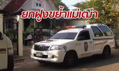 75 year old mauled to death by pitbulls in Nonthaburi | The Thaiger