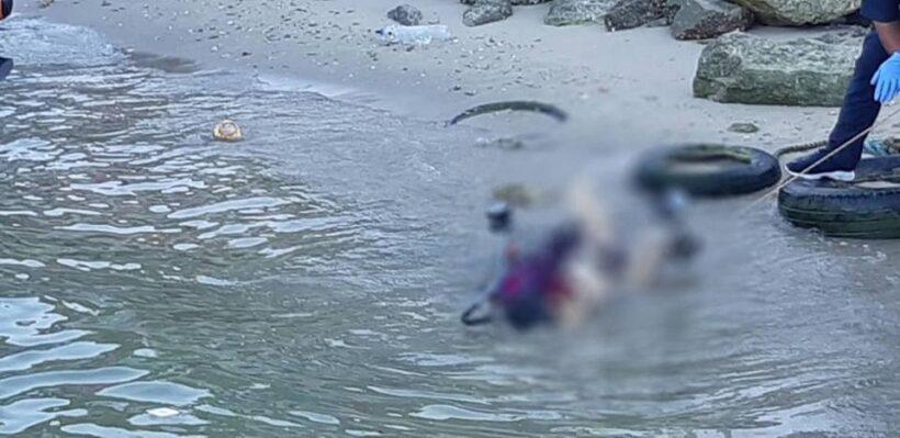 Body of baby boy tied to stroller found off Pattaya beach | News by Thaiger