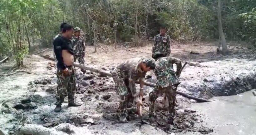 ชื่นชม! เจ้าหน้าที่อุทยานฯทับลาน ช่วยลูกช้างป่าตกบ่อโคลน คาดแช่โคลนมาแล้วกว่า 2 วัน | News by The Thaiger