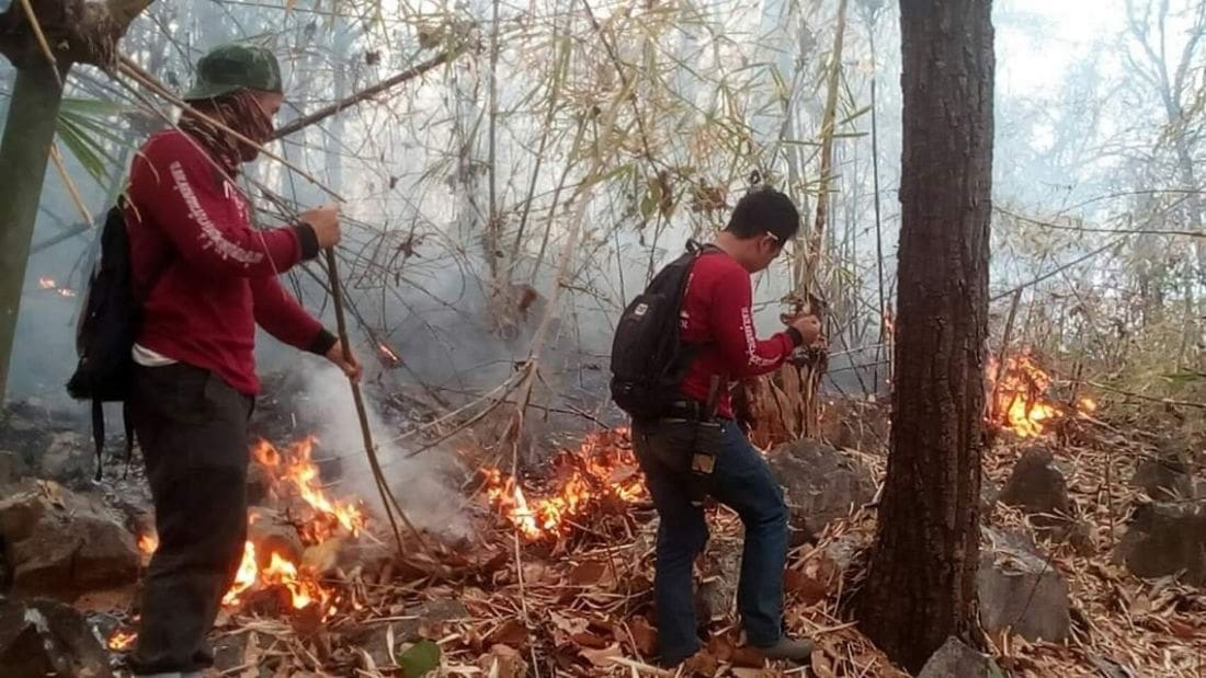 Day One of burning ban - Chiang Mai still choking on poor air quality | News by Thaiger