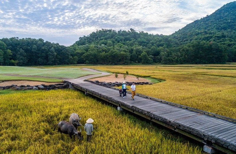 A family of three grooms Vietnam's most edible golf course   The Thaiger