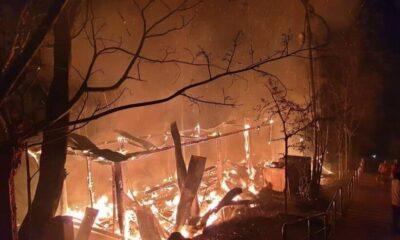 เปิดภาพสุดสะเทือนใจ ไฟป่าไหม้วัดพระบรมธาตุเจ้าดอยเกิ้ง กุฏิวอดทั้งหลัง | The Thaiger