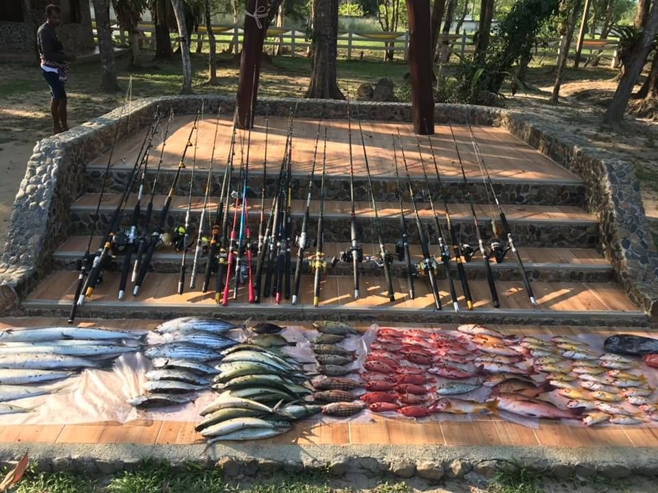 Italians, Thais and Burmese arrested for illegally fishing in Phang Nga national park | News by The Thaiger