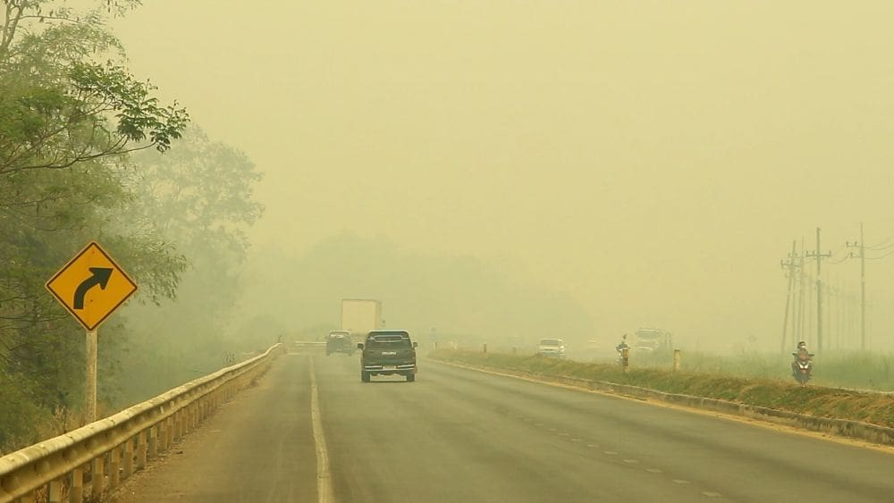 Big farm companies causing the smoke problems in the north | News by Thaiger
