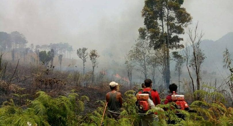 Costs rise for northerners as they struggle with smoke haze – Nida Poll | The Thaiger