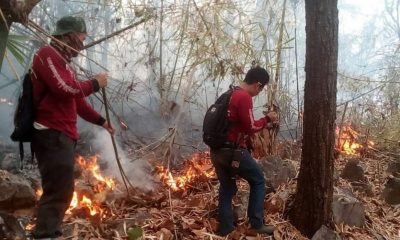 Forest fires destroy 2.7 million rai of land whilst Chiang Mai is back on top | The Thaiger