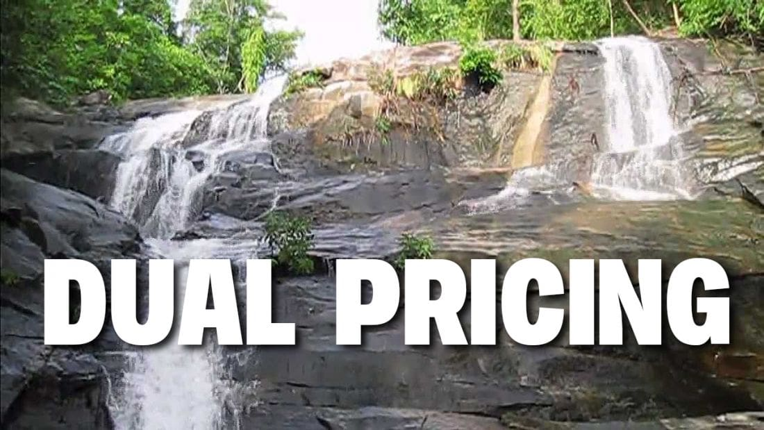 """""""Racial profiling and xenophobic"""" – a rant against Dual Pricing 