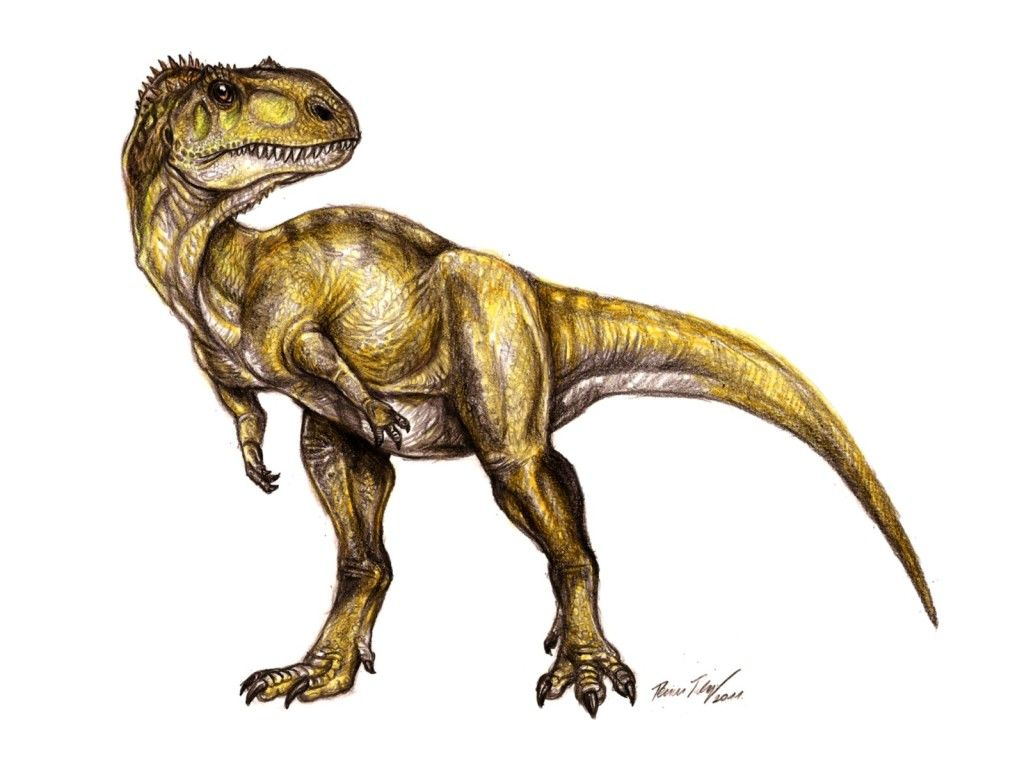 Dinosaur footprints found in north-eastern national park | News by Thaiger