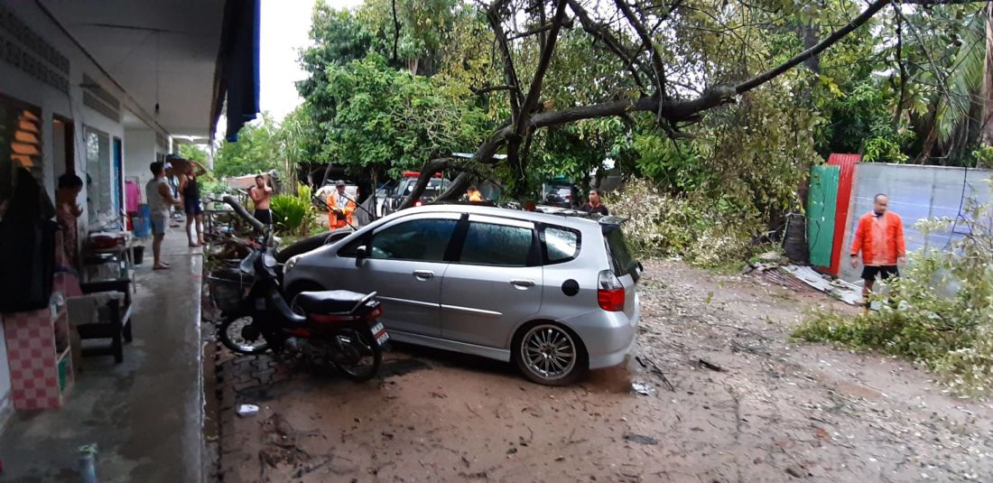 Large tree crashes onto car in Chalong | News by Thaiger