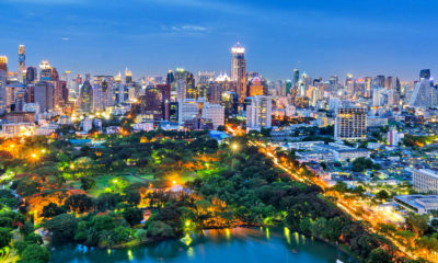 Greening Bangkok: 100,000 new trees for the city costing 30 million baht | Thaiger